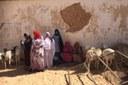 Interventi di emergenza e aiuto umanitario, assegnate le risorse