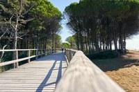 Innovazione per una mobilità turistica sostenibile nel Mediterraneo
