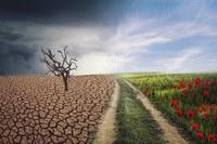 Bando per promozione della sostenibilità e della giustizia ambientale