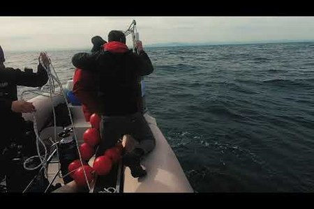 Fondazione Cetacea Onlus - Progetto Soundscape