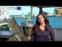 Università di Bologna (Cirsa) - progetto Prizefish